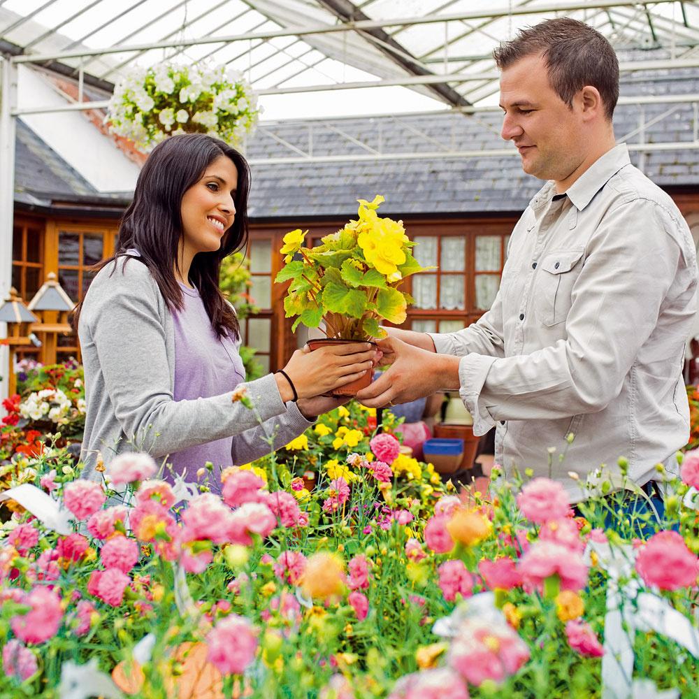 Najkrajšie rastliny nemusia byť najlepšie  Záhradníctva ahobby markety ponúkajú rôzne vizuálne príťažlivé kvitnúce rastliny, neraz aj za atraktívnu akciovú cenu. Ich kúpa však nemusí vždy byť dobrou voľbou. Pri výbere rastlín prihliadajte nielen na ich sympatický vzhľad, ale aj na to, aké podmienky vyžadujú ači im ich viete poskytnúť. Vhodné je myslieť na veľkosť rastliny vdospelosti, ako aj na skutočnosť, či nebude pre niekoho zrodiny nebezpečná (alergikov adeti). Pekná rastlina sa síce nakrátko vzáhone zaskvie, no po odkvitnutí môže začať chradnúť auhynúť. Vždy je preto dobré mať zoznam rastlín, ktoré sa do vašej záhrady hodia (vytvorený odborníkom, prípadne spomocou odbornej literatúry), aten nosiť pri sebe.