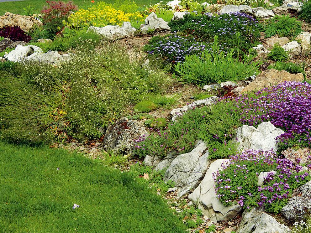10 najväčších záhradníckych prešľapov