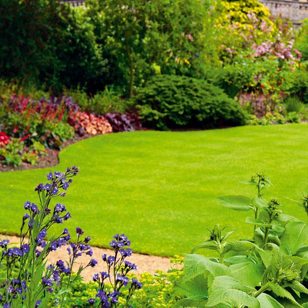 Aj otrávnik sa treba starať  Veľa ľudí si myslí, že okrasnú časť záhrady stačí vyriešiť pekným trávnikom, niekoľkými kvitnúcimi kríkmi, prípadne malou skalkou. Od takéhoto riešenia očakávajú bezstarostnosť acelosezónnu atraktivitu. Opak je však pravda. Ak chcete mať trávnik pekný počas celej sezóny, vyžaduje si to intenzívnu starostlivosť, teda aj dostatok času. Najnevyhnutnejšia starostlivosť zahŕňa nielen pravidelné kosenie azavlažovanie, ale aj prihnojovanie, ošetrovanie proti burinám, prevzdušňovanie, prerezávanie či úpravu okrajov. Samozrejme, ak vám na vzhľade trávnika nezáleží, môžete jednotlivé činnosti vypustiť anechať to na prírodu. Svýsledkom ale zrejme spokojní nebudete.