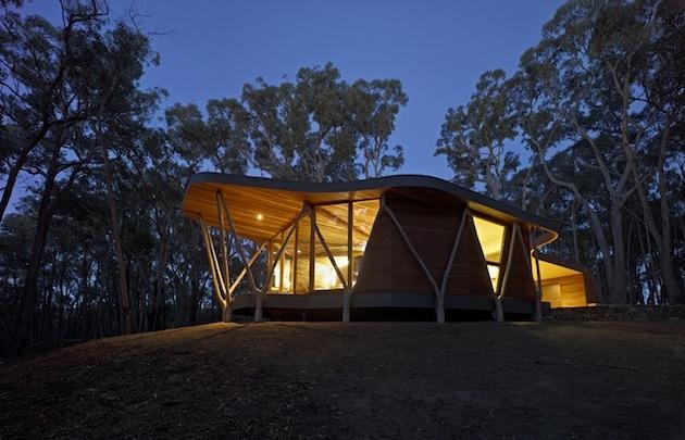 Chatka je situovaná priamo v lese. Na vytvorenie priestoru bolo potrebné odstrániť niektoré stromy, a práve z týchto vypílených eukalyptov samotný dom vznikol.
