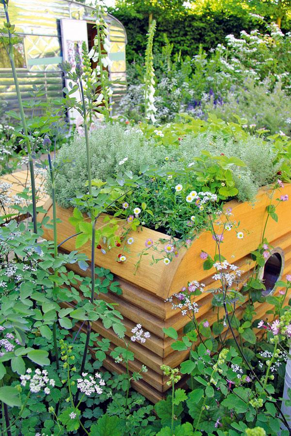 Oprírodnú arómoterapiu sa počas leta starajú trvalky abylinky saromatickými kvetmi aj listami. Kde-tu možno nájsť aj ďalší typický prvok prírodnej záhrady – lesné jahody.
