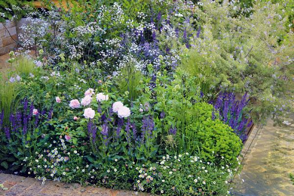 Mliečniky, ruže, šalvie, turice,bedrovníky aďalšie trvalky rastú na presne vymedzených záhonoch prísne geometrických tvarov, prípadne na trendových vyvýšených záhonoch.