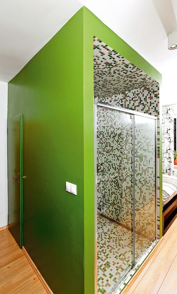 Zelená olejová farba sa ako jediná vec nepozdávala stavbárom asnažili sa majiteľku presvedčiť, že keď ju nanesú, už sa nebude dať ničím iným pretrieť. Našťastie ju nepresvedčili. Veď farba je maximálne praktická, nešpiní sa, neodiera adá sa umyť.