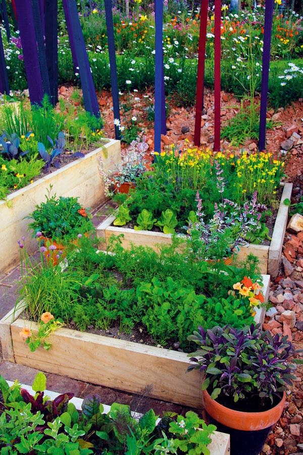 Vyvýšené záhony sú ako stvorené na pestovanie zeleniny. Základom úspechu je – ako inak – kompost.