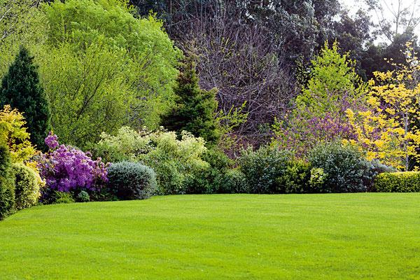 Starostlivosť o trávnik v lete. Najdôležitejší je prísun vlahy, trávnik totiž zle znáša presychanie. Zalievajte   ho skoro ráno alebo večer. Pri zálievke treba počítať s aspoň 15 l vody na 1 m2 (pôda sa prevlhčí asi do hĺbky 10   cm). Medzi každou ďalšou zálievkou by mal trávnik mierne preschnúť, čím sa predchádza hnilobe koreňov. Pokiaľ ide   o kosenie, v lete trávnik nie je dobré kosiť príliš nízko, ideálna výška je 5 cm. Ak by sa kosilo nižšie, môže to   spôsobiť spálenie trávnika a vznik neefektných suchých miest. Kosiť by sa mal aspoň raz týždenne.