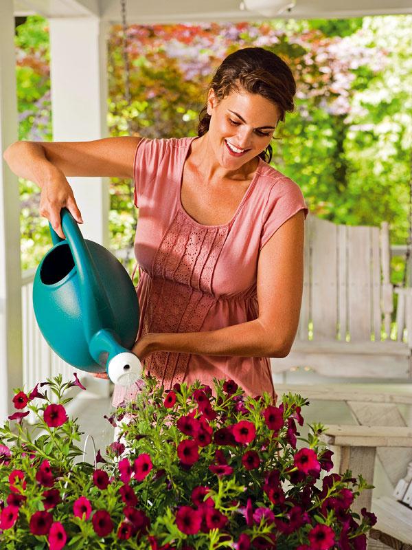 Ako na záplavu kvetov  V tomto období sú už obyčajne okná a balkóny plné kvetín. Výsadby pravidelne zavlažujte, vždy odstátou vodou   skoro ráno alebo neskôr večer. Medzi každým zaliatím by však mal substrát v nádobe mierne preschnúť. Je dobré ich   pravidelne prihnojovať viaczložkovým hnojivom určeným na letničky. Vypláca sa aj odstraňovať odkvitnuté kvety,   čím sa podporí tvorba nových. V prípade druhov, ktoré majú dlhšie výhony, je dobré občas ich zastrihnúť.   Podporíte tak rozkonárenie a hustejší rast. Nevyhnutná je aj pravidelná kontrola zdravotného stavu rastlín.