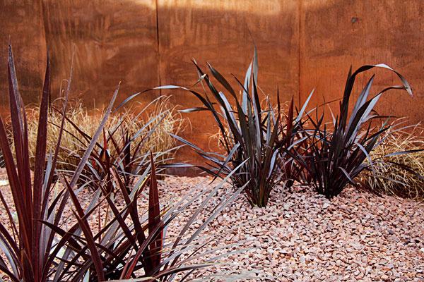Farebné okrasné trávy. Na trhu sa objavili nádherné okrasné trávy a trvalky s trávovitými listami. Ich steblá   môžu byť bordové (ľanovník), takmer čierne (bradník), prípadne svietivožlté, hnedasté (ostrice), červenkasté či   bielo-zelené. Hodia sa do moderných záhrad pred pozadie, do štrkových, prípadne kvetinových záhonov aj do nádob.   Vyhovuje im slnečné miesto, mierne vlhká a priepustná pôda. Vysádzať ich môžete počas celého leta, najlepšie s   koreňovým balom. Efektná je kombinácia rôznych veľkostí – vyššie druhy s nižšími, prípadne ostrovčeky len z   jedného druhu.