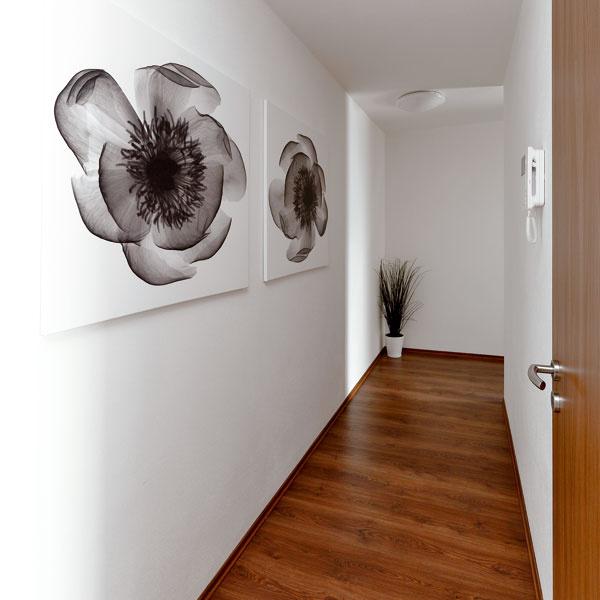 Strohosť chodby zmierňujú čiernobiele obrazy smotívom kvetov – citlivé dávkovanie farieb atvarov nenarúša modernú eleganciu, apritom vnáša pocit osobného. (Obrazy Kloxhult od Lilian Scott aHallaryd od Bridges, 99,90 €, IKEA)