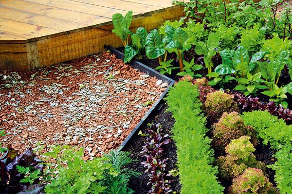 Tlakom spevnená drobná tehlová sutina (stavebný odpad) prirodzene dotvára chodníky aj ostatné plochy vúžitkovej vidieckej záhrade. Zvláštnosťou sú staré kľúče rozsypané po povrchu, plnia tu však čisto dekoratívnu úlohu.