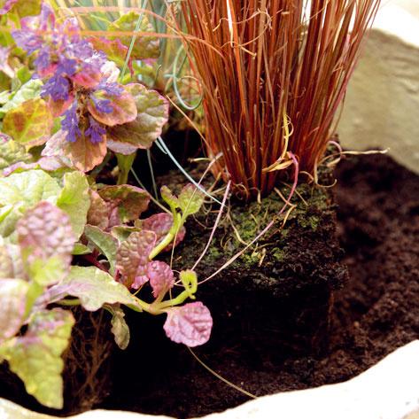 Začnite s výsadbou rastlín. Vysokú trávu umiestnite do stredu nádoby a ostatné rastliny po jej obvode. Prevísajúce druhy okraj nádoby krásne zjemnia.