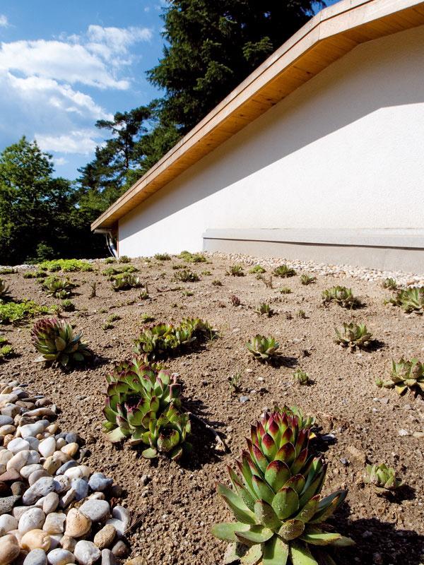 Plocha, ktorú dom zaberá, bola zelenou strechou vrátená prírode.
