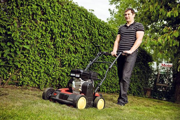 6 rád, čo by ste mali vedieť o jesenných pomocníkoch do záhrady