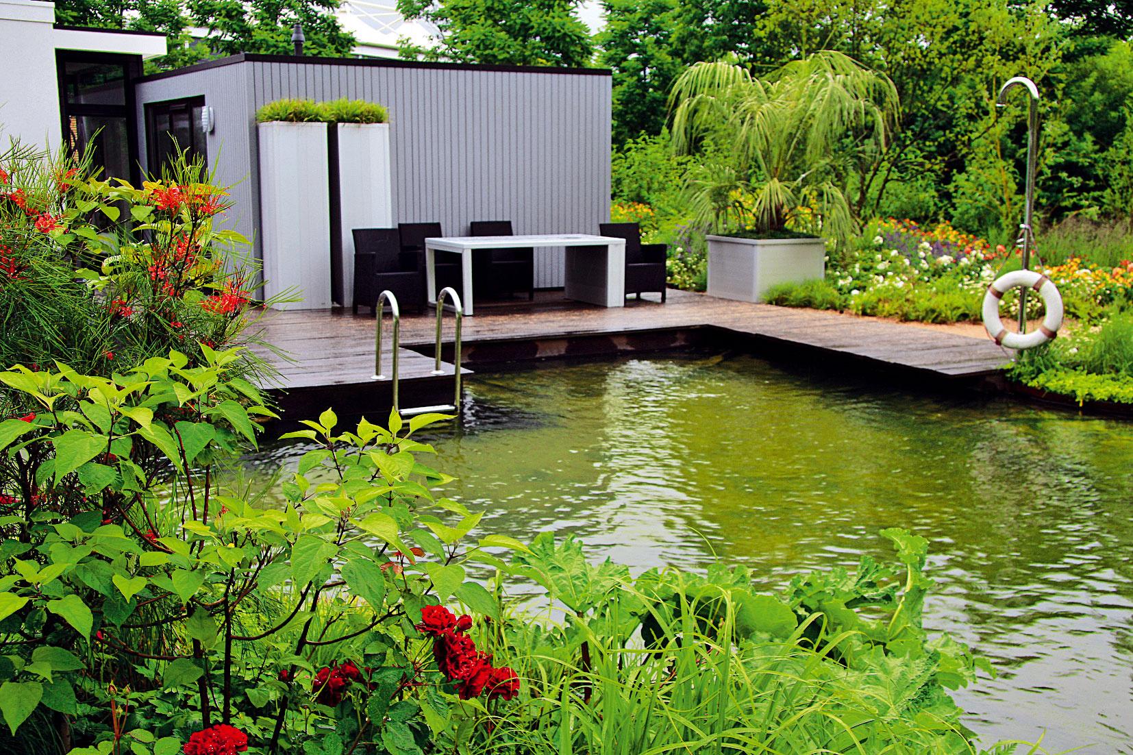 Prírodne ladená záhrada sa nachádza pri modernom prízemnom dome. Dokazuje, že aj stret dvoch rozdielnych svetov môže vytvoriť harmóniu.