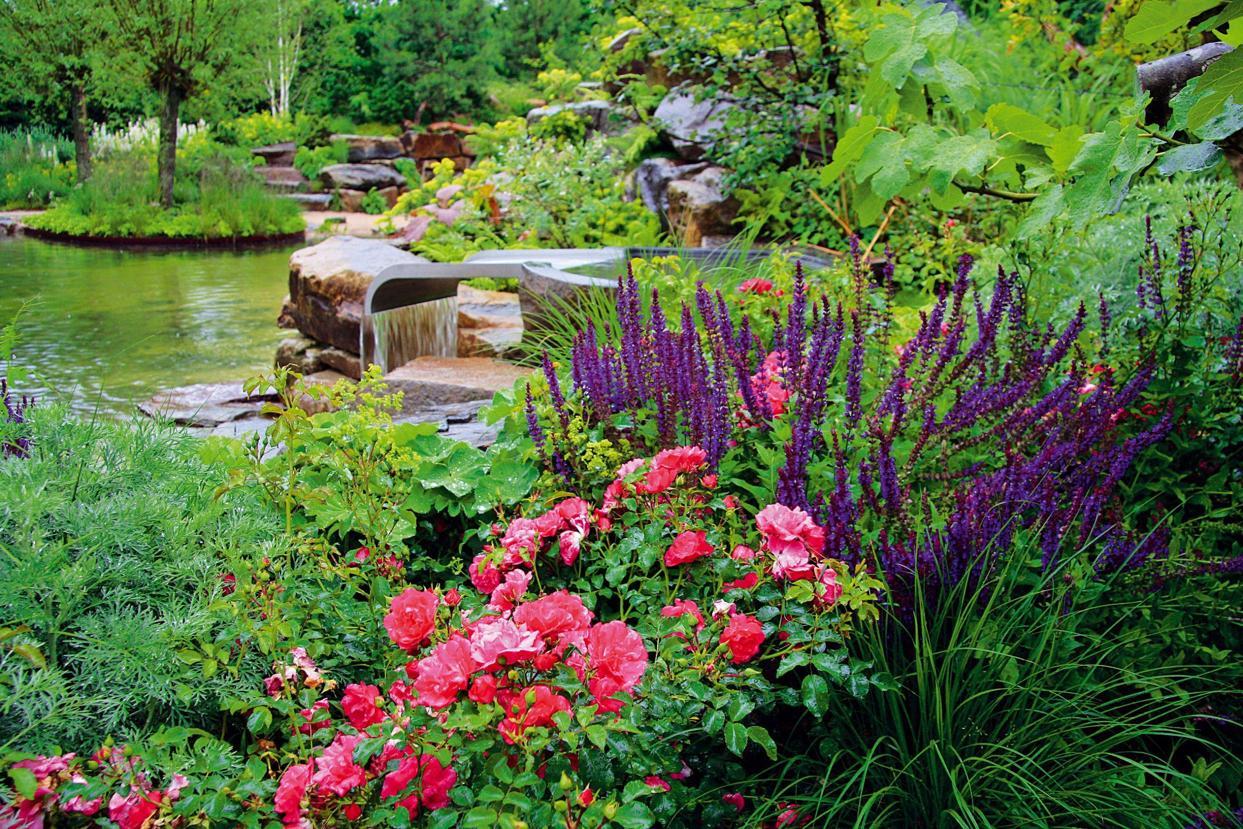 Brehy jazera sú vysadené rozmanitou vegetáciou. Rastliny sú vybrané presne podľa podmienok, ktoré im záhrada ponúka.