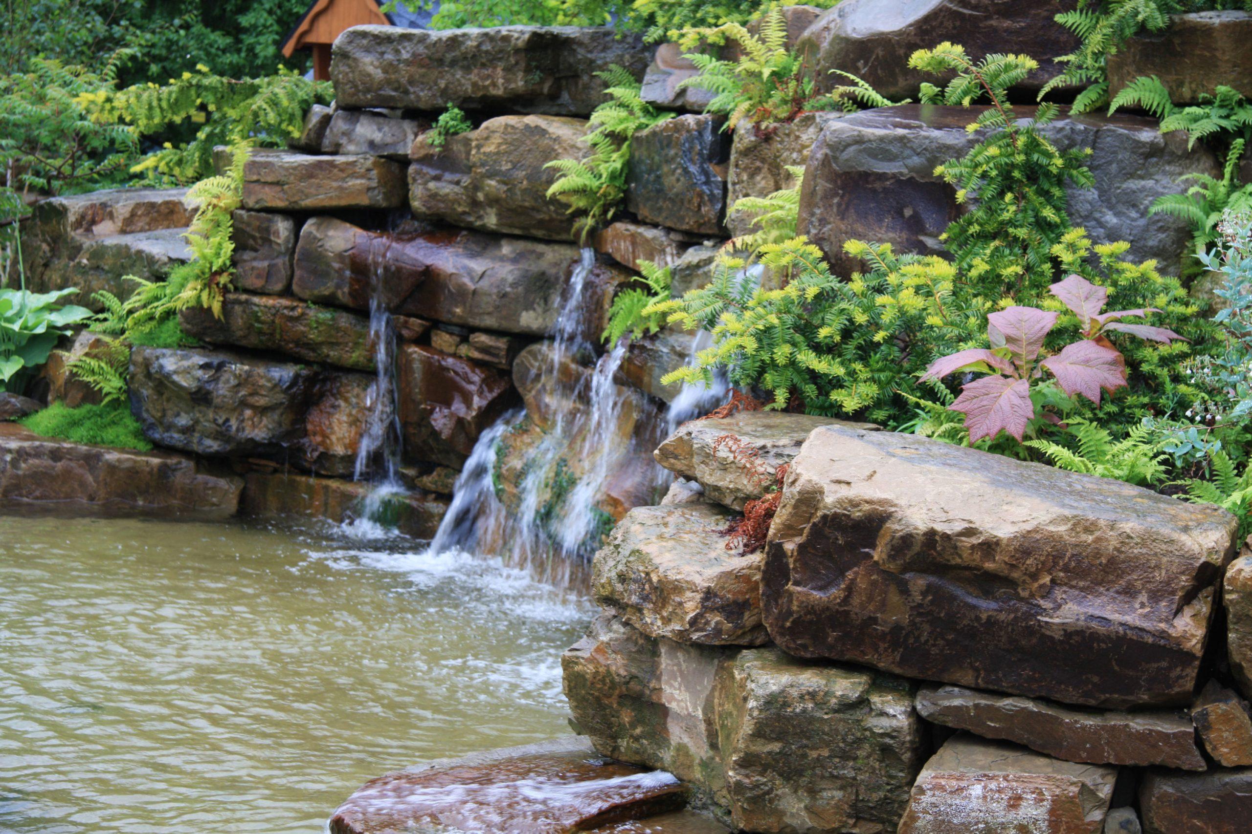 Záhrada, ktorá je dokonalým obrazom nespútanej prírody
