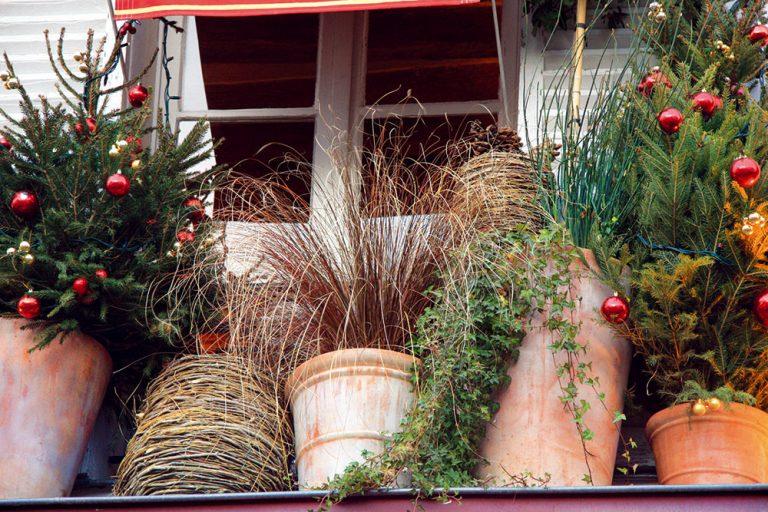10 úloh, na ktoré by ste v záhrade nemali cez zimu zabudnúť