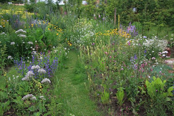 Okrasná ekologická záhrada na vidieku pôsobí harmonicky a upokojujúco