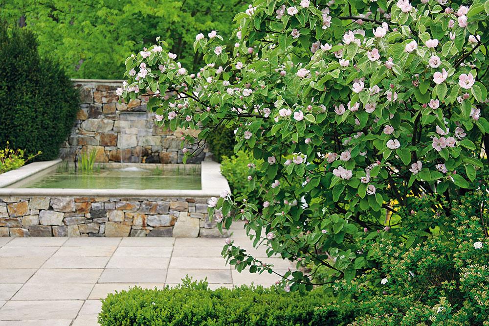 Vmoderných mestských záhradách je vodná plocha (ideálne geometrického tvaru) dôležitým prvkom. Pozor dajte pri výbere veľkosti – zaplniť malú záhradu veľkou plochou určite nie je vhodné avo veľkej záhrade zase nevynikne príliš malá plocha. Vodná nádrž napríklad štvorcového tvaru môže dostať aj pekný rám. Do vody vysaďte maximálne jeden rastlinný druh ato isté platí aj vtesnej blízkosti nádrže. Nádrž by sa mala nachádzať bližšie kdomu abyť zneho či zterasy dobre viditeľná. Efektné je spojiť statickú vodnú hladinu sdynamickým prvkom, napríklad vodným prepadom, prípadne ju zaujímavo nasvietiť.
