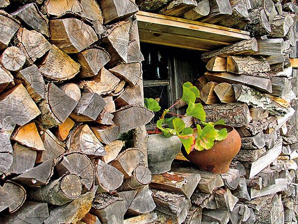 Jedným zbudúcich plánov je postaviť si jednoduchú kôlňu na drevo