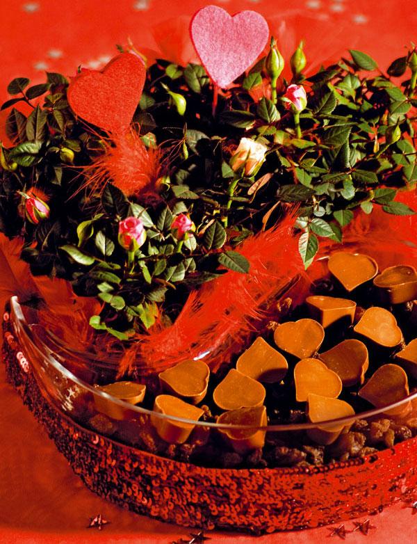 Valentín v znamení mini
