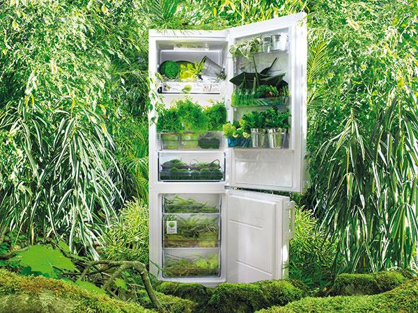 Na čo sa zamerať pri kúpe chladničky