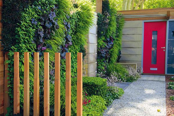 Aj staršiu predzáhradku môžete niekoľkými trikmi premeniť na zaujímavý priestor. Na vidieku urobí dobrý dojem zmiešaný záhon priamo pod fasádou domu. Okrem ruží, cibuľovín, trvaliek aokrasných tráv vňom nájdu miesto aj bylinky. Efektné sú aj rovnako vysadené záhony po oboch stranách prístupového chodníka či väčšie (skôr štvorcové) výsadby uprostred trávnatej plochy. Vstrede týchto záhonov môžu rásť menšie stromy sguľovitou korunkou. Na oddelenie predzáhradky aulice dobre poslúžia klasické živé ploty, ale aj trendové špalierové stromy. Vmestských predzáhradkách vyniknú vertikálne výsadby ztrvaliek anižších tráv. Na slnečnom asuchom mieste bude pôsobivý štrkový záhon alebo kamenná rieka. Siahnuť môžete aj po rôzne tvarovaných drevinách.