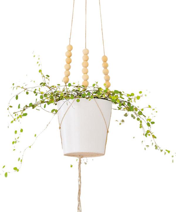 Zprírodného špagátu vytvorte akúsi sieť na ľubovoľný kvetináč. Stačia vám na to uzlíky ana dozdobenie drevené koráliky. Do kvetináča zasadíme akékoľvek izbové rastliny, ideálne popínavé, apotom stačí už len zavesiť ho do priestoru. Málo miesta na zemi už nebude dôvodom, prečo nič nepestujete.