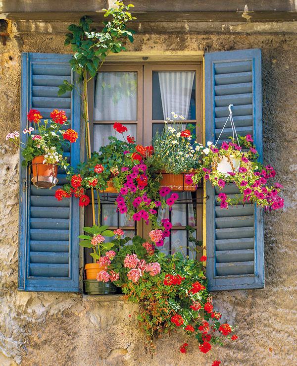 Zvážte opravu alebo repliku. Staré okná sa dnes často likvidujú anahrádzajú novými bez ohľadu na ich kultúrnu hodnotu askutočný technický stav. Radikálne riešenia pritom nie sú vždy nutné – existuje mnoho príkladov, ktoré dokázali skĺbiť technické aj pamiatkarské požiadavky. Pri výrobe nových okien je pritom prínosom zachovanie subtílnostidrevených rámov – úspešné realizácie dokazujú, že aj do takýchto krídel je možné osadiť izolačné dvojsklá. Dôležité sú tiež detaily, ako sú ovládacie prvky azávesy.