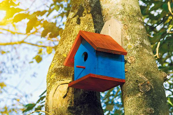 Kdôležitému vybaveniu biozáhrad patria rôzne hmyzie skrýše atzv. hotely, vtáčie búdky, staré pne, kopy dreva či kamenia, vďaka ktorým sa priestor stane domovom pre už spomínané užitočné živočíchy.