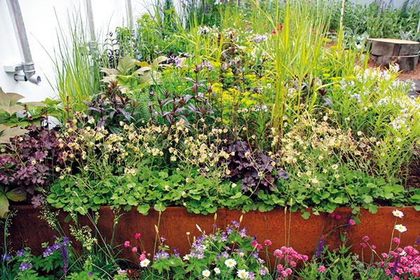 Ideálne je, ak sa pri výsadbe použijú domáce druhy rastlín (napríklad plané alebo dávno zabudnuté), ktorým vyhovuje naša klíma. Exotické rastliny do biozáhrady nepatria, hoci vnich často vidieť napríklad figovníky.