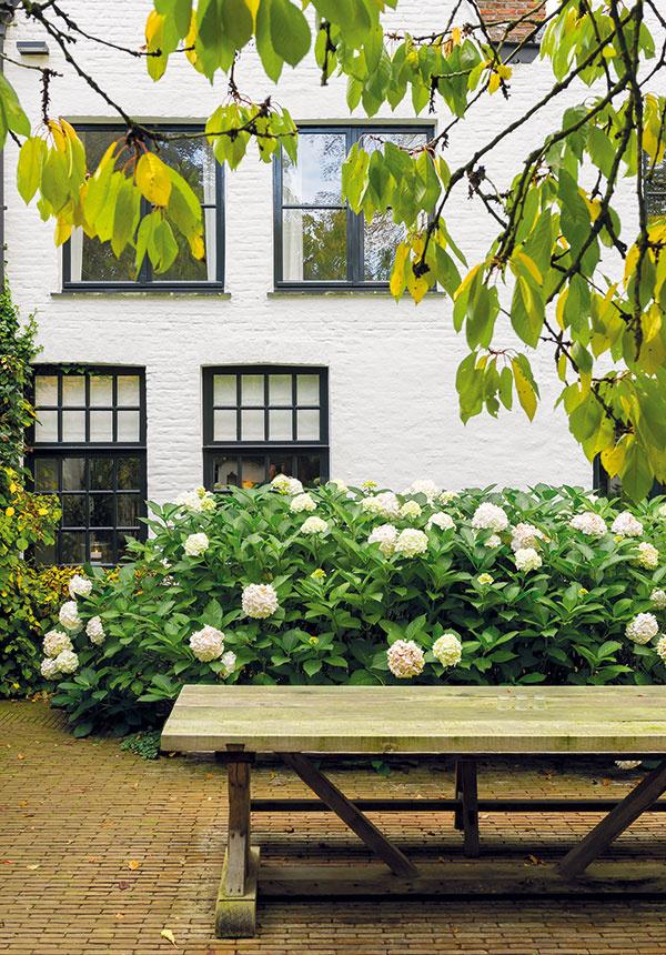 Obytné priestory sú situované najmä vzadnej časti domu, odkiaľ je prístup do záhrady avýhľad na priľahlý park.