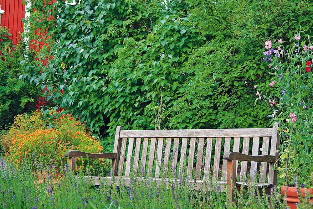Voľne rastúci živý plot, prípadne časť plota porastená kvitnúcimi popínavkami, predstavujú najvhodnejšie anajprirodzenejšie ohraničenie tradične ponímanej záhrady. Aktuálne sú trendové aj kvetinové lúky, ktoré môžu nahradiť trávnatú plochu.