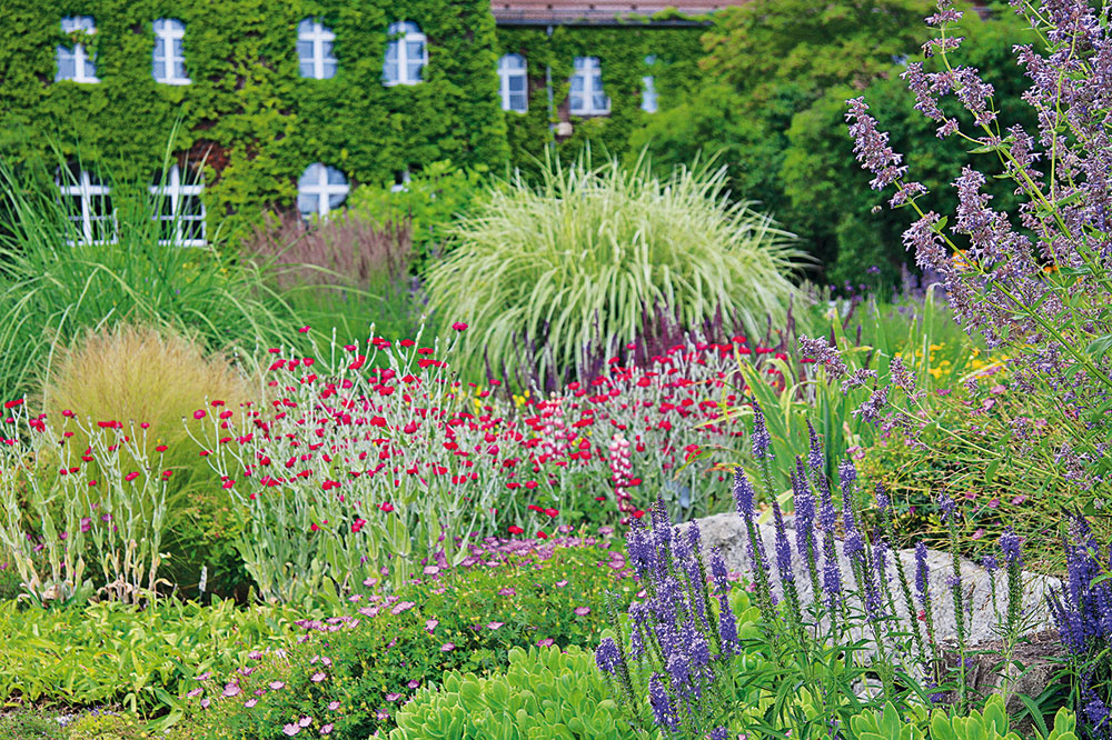Moderná záhrada v hlavnej úlohe