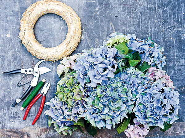 Materiál anáradie hortenzie zo záhrady slamený korpus závitnica  záhradné nožnice kliešte na drôt