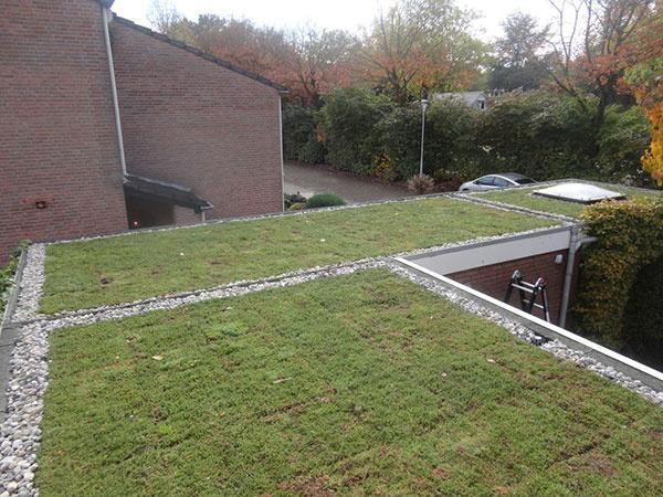 Zelené strechy sa dnes môžu jednoduchšie inštalovať aj udržiavať
