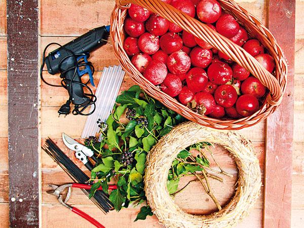 Materiál anáradie slamený korpus malé červené jabĺčka brečtan tavná pištoľ s náplňami drôty šípky (nemusia byť)