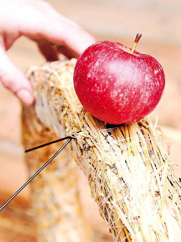 Takto nadrôtované jabĺčka pozapichujte do slameného korpusu. Na jeho druhej strane drôt zatočte a konce pozapichujte do korpusu.