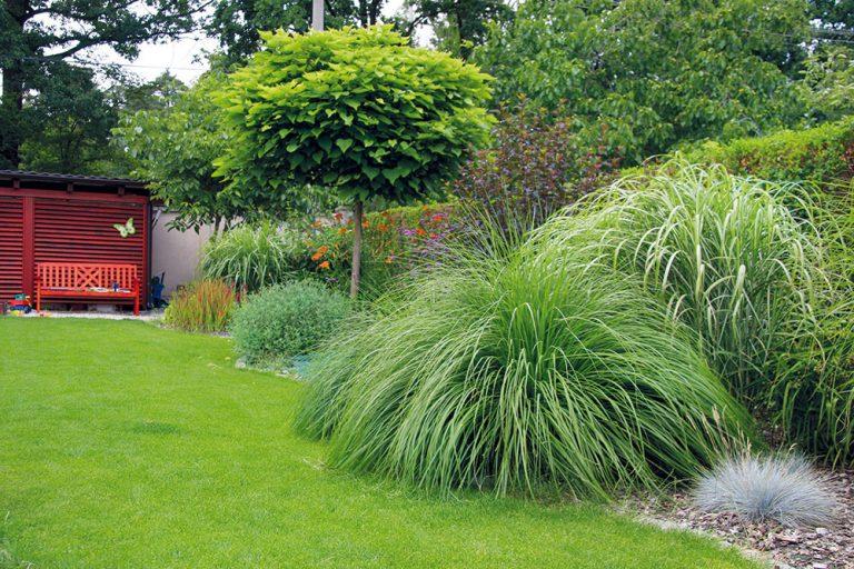 Z obyčajnej úžitkovej záhrady si za domom spravili takúto nádheru