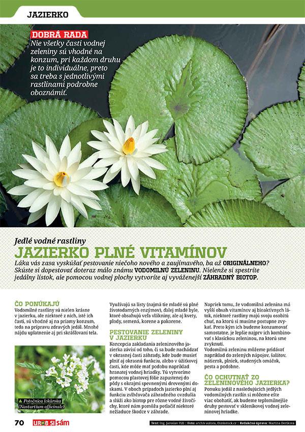 Januárové vydanie UROB SI SÁM je tu! Izbové rastliny - bojujeme proti škodcom!