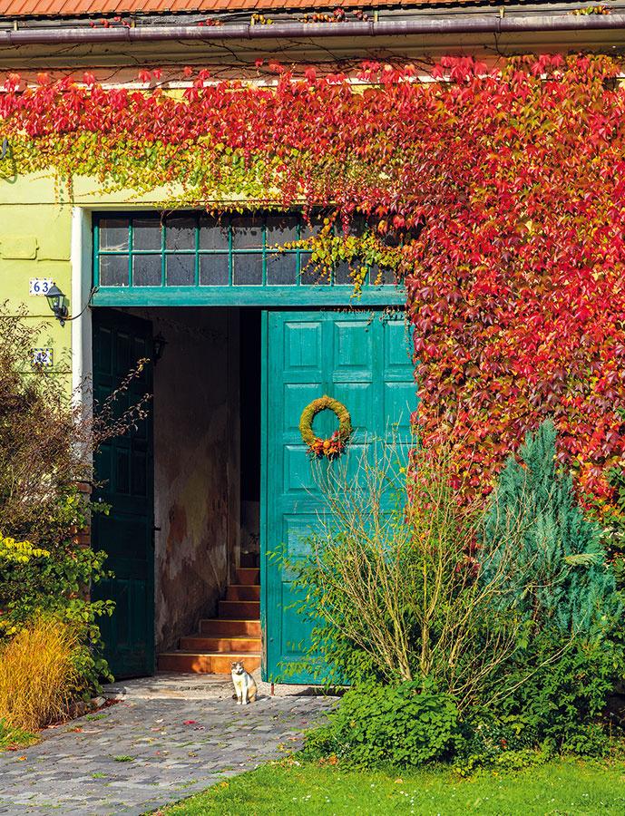 Súbežne s rekonštrukciou domu si na komplikovanom teréne založili nádhernú záhradu