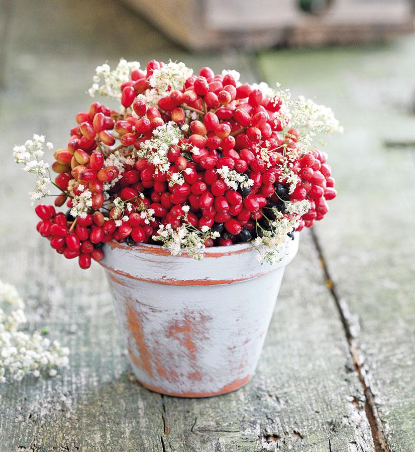 Kvetináč môžete natrieť aj inou ako bielou farbou alebo ho natrite dvomi či tromi vrstvami (každá inej farby). Namiesto kvetov môžete naaranžovať bobuľové plody, šípky či mach.