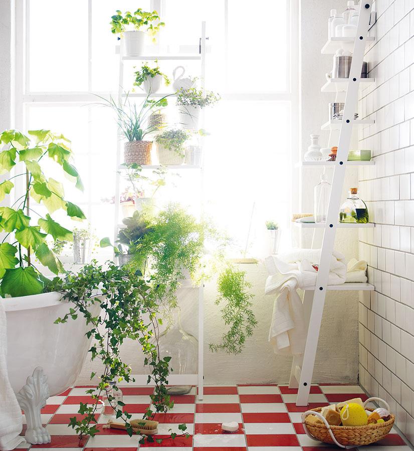 DO KÚPEĽNE neumiestňujte mohutné rastliny rastúce do šírky ani opadávajúce či také, ktoré majú tŕne.