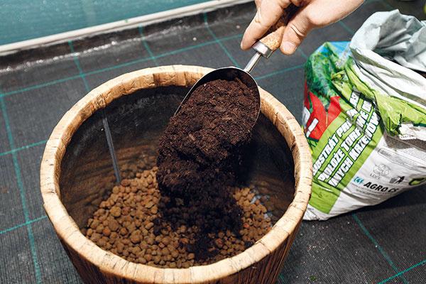2 Kvalitný substrát. Na drenážnu vrstvu nasypte asi do polovice objemu nádoby prvú vrstvu čerstvého univerzálneho záhradníckeho substrátu. Mal by byť kyprý, mierne vlhký, sdrobnohrudkovitou štruktúrou aobsahovať hnojivo spostupným uvoľňovaním živín. Použiť môžete aj substrát na pestovanie balkónových rastlín.