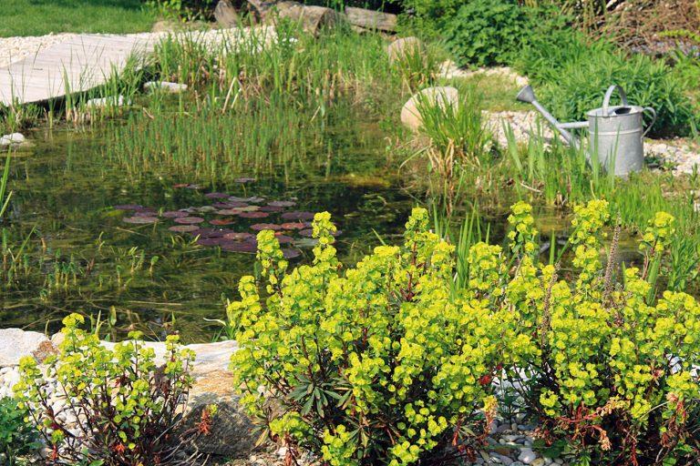 10 najdôležitejších činností vjarnej záhrade