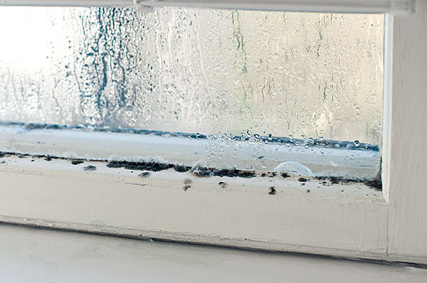 Hoci je okno nové aúsporné, vždy bude najchladnejšou plochou vmiestnosti. To, že radiátor je práve pod ním, nie je žiadna náhoda. Očakáva sa od neho, že rozprúdi vzduch aohreje ním podchladené plochy. Ak mu však stojí vceste záves, záclona či hustá aleja kvetov, nemôže naplniť svoje poslanie. Otočte ventilom kplusu adajte priestoru dýchať. Uvidíte zmenu klepšiemu. Aak by ste hľadali náhradu za radiátor, spomeňte si na elektrickú vykurovaciu rohož, ktorú možno osadiť pod kamenný, betónový alebo keramický parapet.