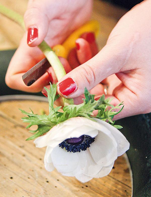 1 Biele anemonky nožíkom skráťte apostupne ich pozapichujte do hmoty, ktorú predtým dobre namočte vo vode.