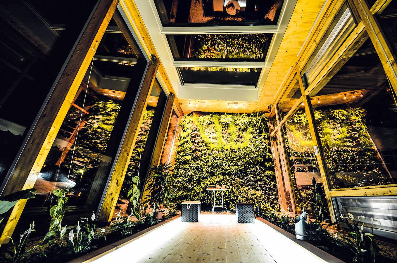 """Najatraktívnejšou časťou nárazníkovej zóny je zelená stena – vertikálna záhrada. Zatiaľ sú tu vysadené okrasné rastliny, pomocou ktorých sa testuje automatické zavlažovanie. """"Stavali sme ju veľmi dlho, ale myslím, že stojí za to,"""" hovorí Dárius Moravčík. Vkvetináčoch na zemi pestujú študenti prevažne bylinky aďalšie rastliny využiteľné vkuchyni. """"Veľmi dobre sa nám darí sjahodami, paradajkami, dokonca aj sbanánovníkom. Nárazníková zóna totiž funguje podobne ako skleník apo celý rok je vnej pomerne teplo avlhko,"""" prezrádza študent."""