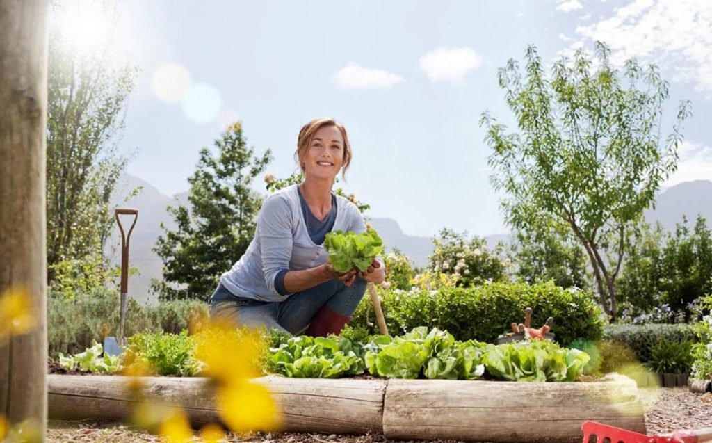 Chránime vašu záhradu