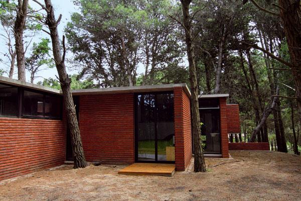 Dom, ktorý sa prirodzene preplieta medzi borovicami
