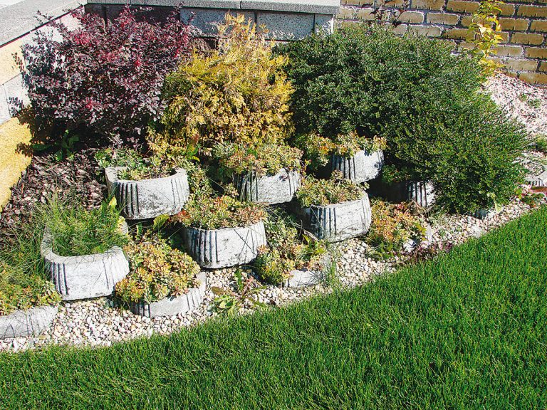 Spevnené plochy zohrávajú v záhrade dôležitú úlohu. Pozrite si tie najzaujímavejšie riešenia